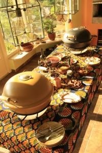 mooie en luxe pizza ovens - African Flame